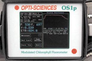 OPTI_OS1p(ps)_max_w309xh204