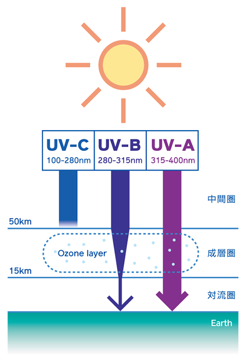 紫外線の人体への影響度   EKO 英弘精機株式会社   気象・環境・物性 ...